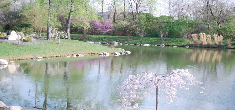 Japanese Garden, Carmel